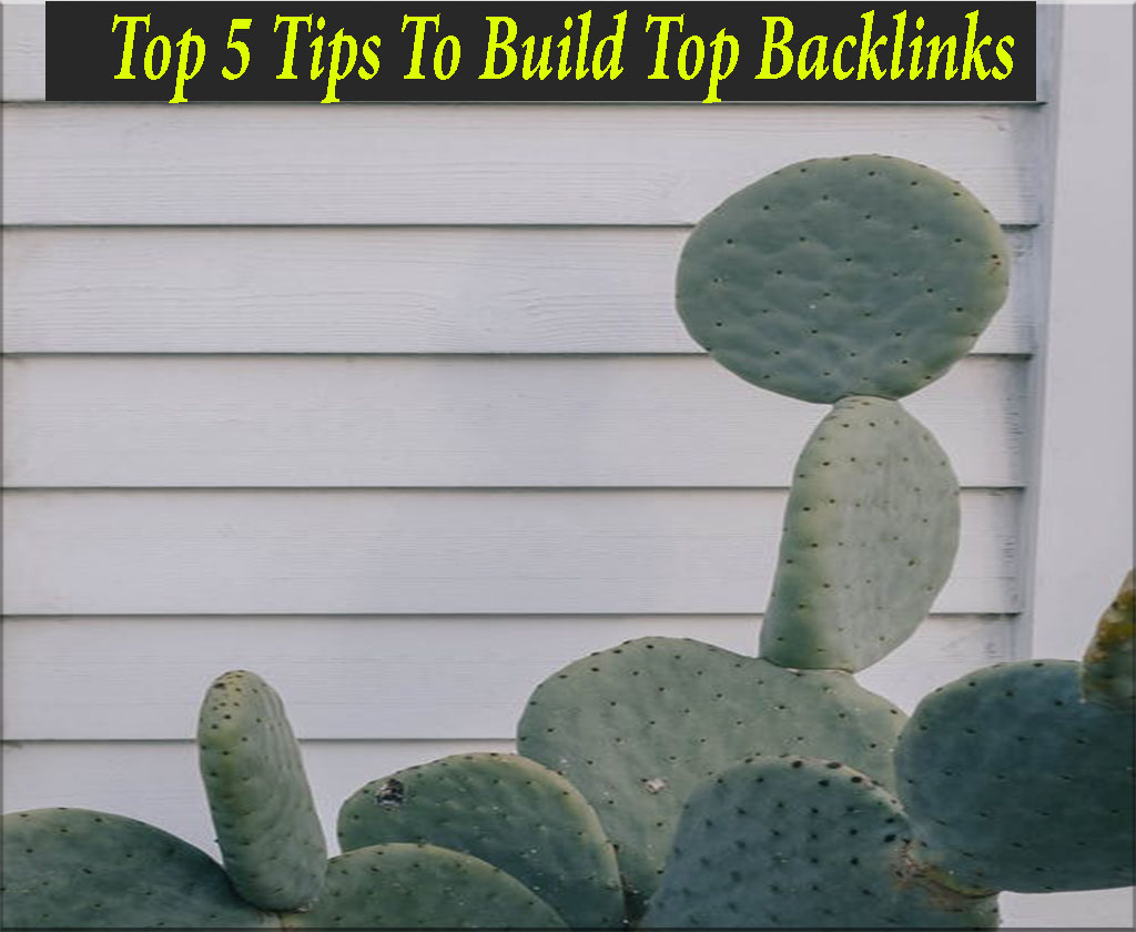 Top 5 Tips To Build Top Backlinks